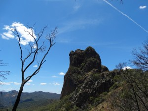 Warrambungle National Park